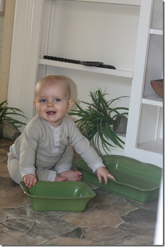 Learning to crawl and getting into everything! (10 months old)